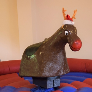 Rodeo Reindeer